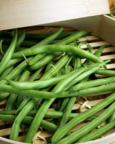 סלט שעועית ירוקה אסיאתי